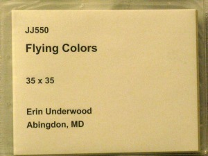 flying-colors-id-card
